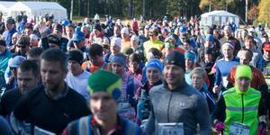Aldrig tidigare har Härnö Trail haft så många deltagare.