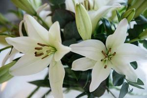 Färska blommor syns överallt i huset.