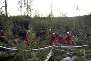 Elden är släckt och en kort fikapaus väntar för Mia Lönegård, Martin Voest, Fia Alfredsson och Stefan Korssjön.