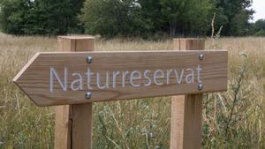 Det finns två naturreservat på Folins marker, Norra och Södra hammaren.