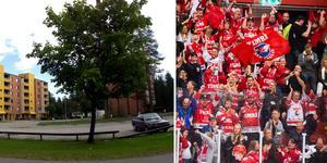 Parkeringsplatserna i Tallnäs är till för oss som bor här och för dem som besöker oss och inte för er som är för snåla att betala för parkeringen och stötta laget med pengar, skriver Månicca. Bilder: Arkiv