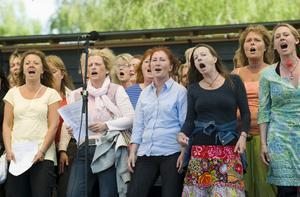 De som säger att alla kan sjunga vet inte vad de pratar om, anser Östen Hannmyhr. Foto: Henrik Montgomery / SCANPIX
