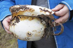 Mycket skräp finns nerslängt i hålorna – en rostig, emaljerad potta var bland det första man fann i södra schaktet.