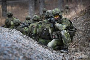 Att dåvarande arméchefen general Anders Brännström påpekade brister inom förvaret gjorde honom omöjlig  på sitt jobb och ha sa upp sig.
