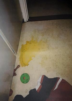 Foto: polisen. I den trånga kolsvarta hallen var det både urin och avföring på golvet.