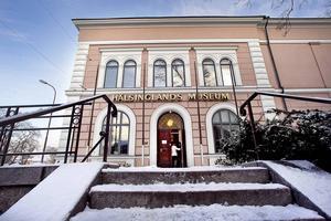 Hälsinglands museum är landskapets mest besökta museum. 46000 såg utställningarna här under förra året.