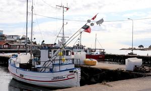 Om det  småskaliga hållbara fisket ej kan bedrivas vid Roslagskusten på grund av torskfiskestopp, och att inga stödpengar delas ut, finns stor risk att våra kustnära yrkesfiskare försvinner.  Det skriver insändarskribenten.