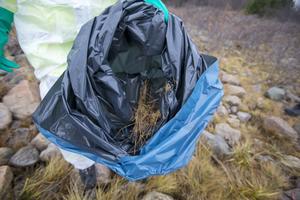 Sofie Östling och hennes kollegor lägger den upphittade oljan i plastsäckar som sedan samlas ihop.