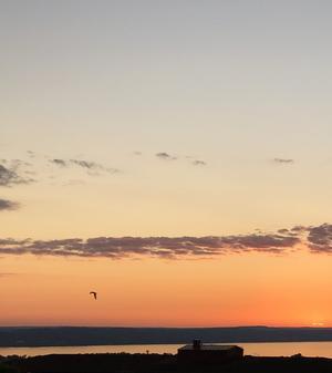 En sommarkväll i juni. Så vackert! Bild: Mia Bergström