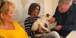 Överlevde. 10-åriga Jack Russelltiken Iza blev överfallen av en Pitbull på tisdagen och räddades av Lennart Heintz till höger och hustru Annelie till vänster. I mitten Izas matte, Pia Aldenhed.