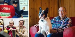 Hunden Tarasov är döpt efter den ryske demontränaren. Bilder: TT, Bildbyrån och Kenneth Fahlberg