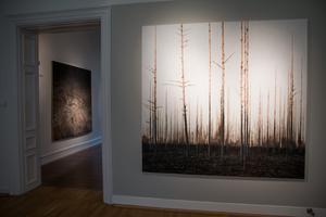 Målningarna är närmare två gånger två meter stora. Närmast i bild syns tavlan Nejd. Utanför dörren skymtas målningen Tjärn.