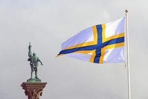 En sverigefinsk flagga. Foto: Janerik Henriksson / TT / kod 10010