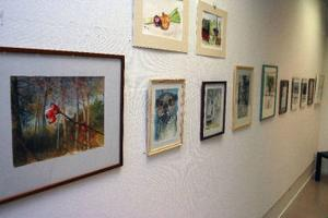 13 lokala konstnärer ställer just nu ut på biblioteket i Timrå. Det handlar om amatörkonstnärer och konsthantverkare som får chansen att visa lite av sina alster. Utställningen pågår fram till och med den 3 december.