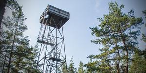 Tornets topp har varit otillgänglig för allmänheten sedan hösten 2018.