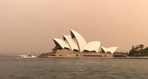Brandrök över operan i Sydney. Foto: Emma Gyllestad / TT