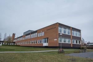 Parkskolan kan bli ett flaggskepp i Östersund, enligt Alliansen.