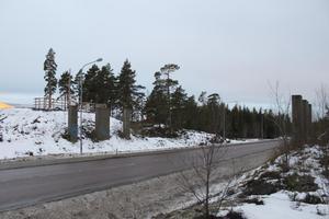 Brofundamenten över Flygvägen står tomma och övergivna, och snart igenväxta av bland annat lövträd. Läsarbild.