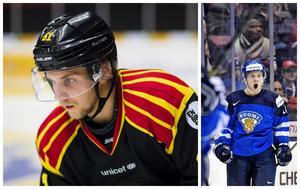 Juuso Ikonen är uttagen till finska landslaget efter den senaste tidens succé i Brynäströjan. Bild: Bildbyrån.