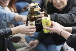 Ungdomar som dricker alkohol har blivit sällsynta på Avestafestivalen. Bilden är tagen i ett annat sammanhang.Foto: Fredrik Sandberg/TT
