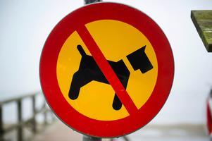 Jag är förvånad över hur ogästvänligt Sverige är mot oss hundägare och våra fyrfota vänner, skriver skribenten.