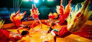 Sex unga artister i manegen samtidigt - ett av Cirkus Elviras färgsprakande nummer i Sommarskoj 2019. Bild: Lia Jacobi