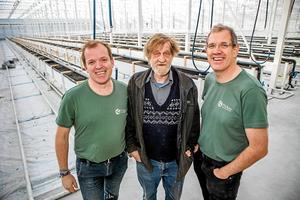 Vd Hugo Wikström, till vänster, tillsammans med Pecka Nygård och Daneil Brännström.