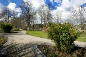 Folke Löfgrens park.