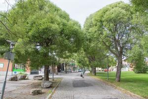 Centrum i Brunflo ska bland annat utvecklas till att bland annat innehålla fler mötesplatser.
