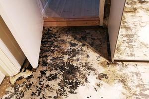 Golvet i rummet intill höjdes upp i samband med en tidigare översvämning.