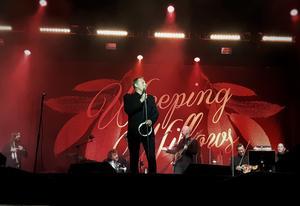 Recensenten ger Weeping Willows, med frontmannen Magnus Carlsson i spetsen, högsta betyg. Foto: Olle Ekman