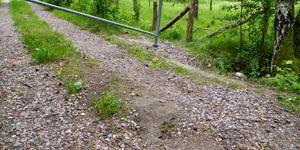 Det är inte konstigt att skogsägare sätter upp vägbommar i bärplockningstider, skriver insändaren.