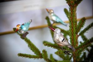 Adventsgranen pryds av små glasfåglar.