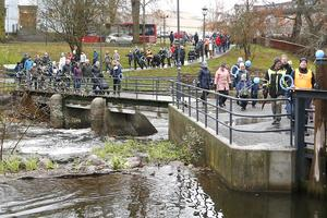 Gångvägar och gator fylldes av deltagare på den 2,5 kilometer långa Diabetespromenaden genom stan och ut till Borgmästarholmen.