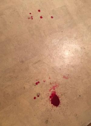 Blod från brottsplatsen. Foto: Polisens förundersökning.