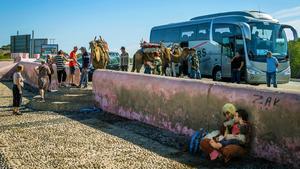 Turister, kameler och utsatta människor i Marocko.  FOTO: PETER REICHEL