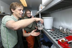Ulf Bergström och Isa Wallin har blandat mjölke och rom i glasbehållare med vatten som har olika salthalter. Resultatet ska visa om leken lyckas här, det vill säga att befruktning kan ske i så låga salthalter som råder i Ålands hav. Då betyder det att det finns ett eget bestånd här. Om inte, så kommer resultatet visa hur nära Ålands hav det fungerar.
