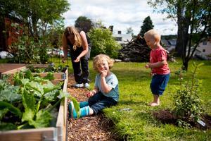 Att hjälpa mamma och pappa i trädgården är något som Harry och Olle gillar.