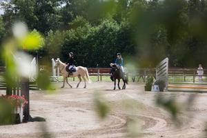 Efter två och en halv dag av storhästar är det dags för ponnyhoppning.