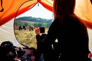Med hästarna Jumper och Peter Pan, reste Linda genom Mongoliet. Bild: Linda Sjölander Dillenbeck/Privat