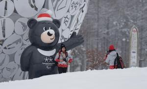 Kronprinsessan Victoria reser till Paralympics i Pyeongchang i Sydkorea. Här är Paralympicsmaskoten Bandabi.Foto: Lee Jin-man/AP Photo.