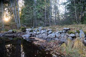 Samma person som arbetade som konsult inför Sveaskogs rivning av Bergvattnets damm i Tiveden, är nu ansvarig för nationella vattenplanen på länsstyrelsen. Arkivbild.