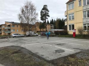 Parkeringsproblemen inne på området har drivits ut på gatan. Där är parkeringen gratis, men trafiksikten försämras och det är svårplogat om vintern. Det säger Ulrika Erixon, ordförande i Hyresgästföreningens lokalavdelning Ardennern.