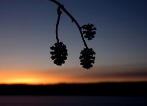 Solnedgång över sjön Noren i Norberg.