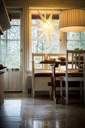 Utanför köksfönstret flaxar domherrarna kring fågelbordet. Katten Ludde sover lugnt på kökssoffan och missar hela spektaklet.