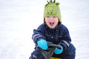 Viggo 3,5 år lånar sin kusins bob och kör rally på en skriskobana i Blackeberg.