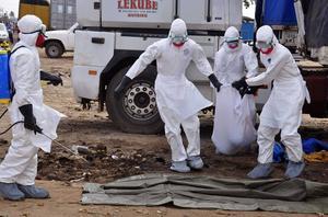 Sjukvårdare bär kroppen från en man som misstänks ha dött av ebolaviruset. Bilden är tagen 12 augusti i år i Liberias huvudstad Monrovia.
