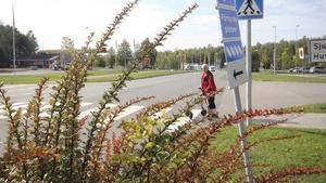 Ragni Stormblad har i fem års tid försökt få ansvariga att klippa ner häckarna intill Floravägen.