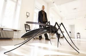 """NATUR. I många av Björn Gimstedts verk finns det en  """"naturlig lyrik"""". Den här jättemyggan i järn finns med  i utställningen som öppnar i dag. Foto: Mats Olsson"""