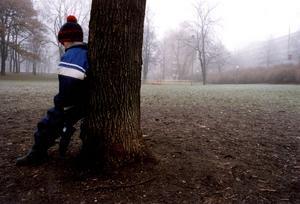 Antalet barn som tillsammans med sin familj vräks har minskat under senaste åren, men i Sundsvall fick elva barn ändå lämna sina hem under 2014.